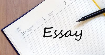 Most effective Essay Suggestions & Guideline  attempting to